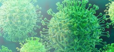 Klicken Sie. So reagiert MSD auf das Coronavirus COVID-19