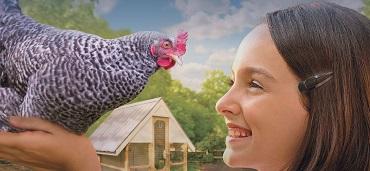 klicken hier und öffne die seite vogelmilbenexperte.de